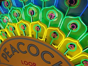 The Peacock Loop Diner's New Neon Sign is a WORK of ART!